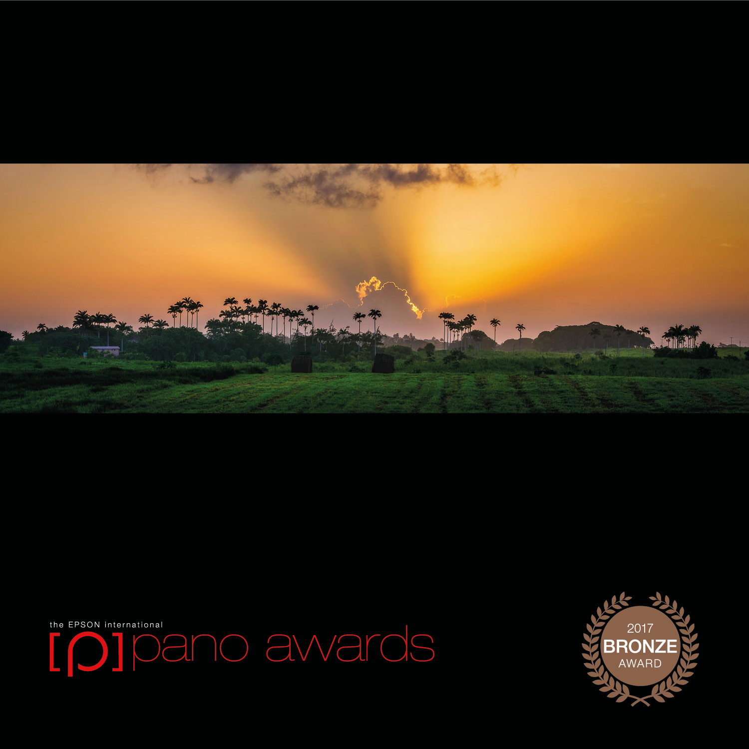 2017-Epson-Pano-Awards-Amateur-Bronze514.jpg