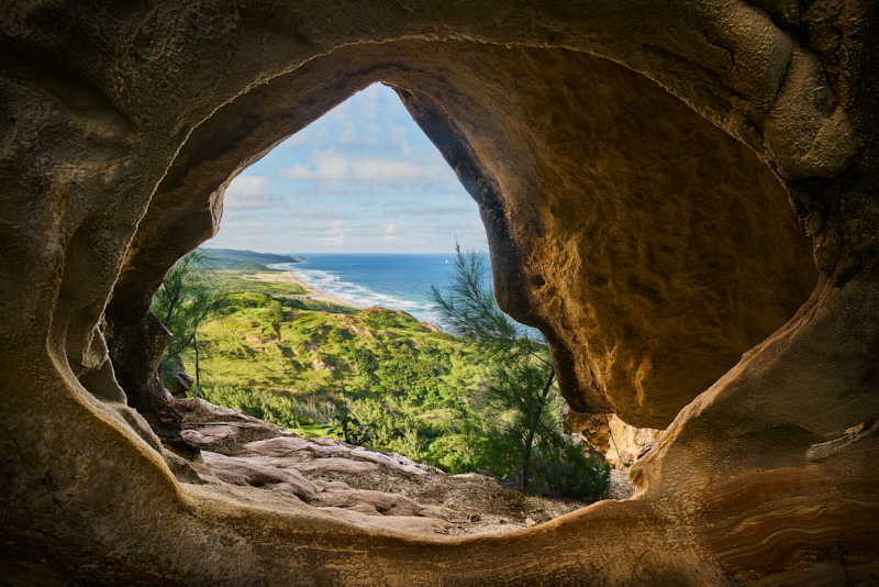 aDonawa-barbados-East Coast Window.jpg